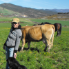 Navarra, diagnosticando la salud de los procesos econsitémicos